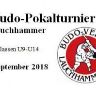 9. Pokalturnier in Lauchhammer