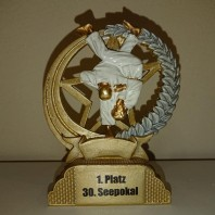 12 Medaillen beim 30. Seepokalturnier in Senftenberg