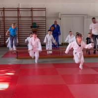 Judo-Minis